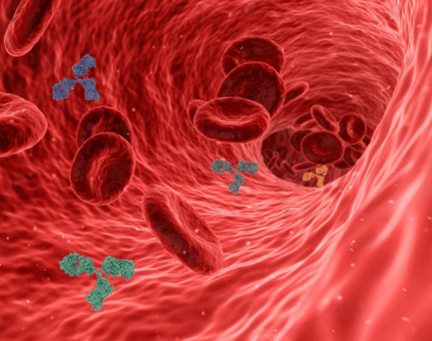 Antibody Diagnostic Tests For Covid-19